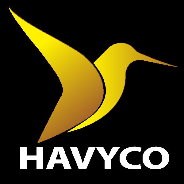 Logo-HAVICO